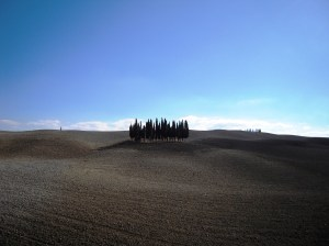 In Tuscany, trees huddle together in islands as security against the plough-scorched earth.